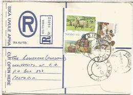 TRANSKEI CC CERTIFICADA SELLOS OVEJA SHEEP ARTE - Transkei