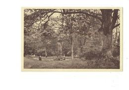 Cpa - 14 - Herouville - Maison De Convalescence - Vue Sur L'île - Religieuse - Herouville Saint Clair