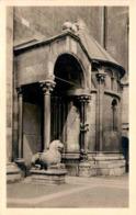 Trento - Dom-Portal - Trient (20254) * 1916 - Trento