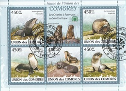 Isole Comore 2009 Yv. 1731/1735 Les Otaries A Fourrure Subantarctique Sheet CTO Perf. Comores - Isole Comore (1975-...)