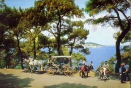 Istanbul - Ve Incileri - The Princes Islands - Formato Grande Viaggiata – E 7 - Turchia
