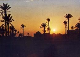 Jerba - Tunisia - Coucher De Soleil - Formato Grande Viaggiata – E 7 - Tunisia