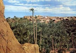 Nefta - Tunisie - Formato Grande Viaggiata – E 7 - Tunisia