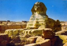 Giza - The Sphinx - Formato Grande Viaggiata – E 7 - Gizeh