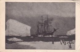 OLD CARD ICEBRAKER STORMBREAKER POLAR SCEANE  USHUAIA CIRCA 1900s-ARGENTINE - BLEUP - Argentinië