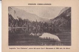 EL TRONADOR, CORDILLERA DE LOS ANDES. SOCIEDAD FORESTAL ARGENTINA 1924-CARD- BLEUP - Argentinië