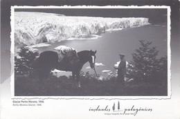 GLACIAR PERITO MORENO (1946). INSTANTES PATAGONICOS. AÑO 2008- BLEUP - Argentinië