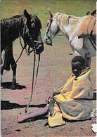 Basotho Ponies - Lesotho - Lesotho