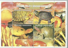 MADAGASCAR 1999   ** MNH TORTUGAS - Turtles