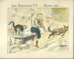 "1389 "" LES POURQUOI ??? ..... PARCE QUE ..... "" FIGURINA DIDATTICA FRANCESE  ORIGINALE - Libri, Riviste, Fumetti"