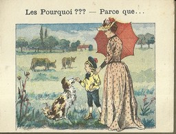 "1390 "" LES POURQUOI ??? ..... PARCE QUE ..... "" FIGURINA DIDATTICA FRANCESE  ORIGINALE - Libri, Riviste, Fumetti"
