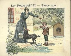 "1402 "" LES POURQUOI ??? ..... PARCE QUE ..... "" FIGURINA DIDATTICA FRANCESE  ORIGINALE - Libri, Riviste, Fumetti"