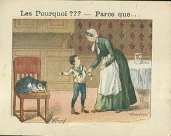 "1404 "" LES POURQUOI ??? ..... PARCE QUE ..... "" FIGURINA DIDATTICA FRANCESE  ORIGINALE - Libri, Riviste, Fumetti"