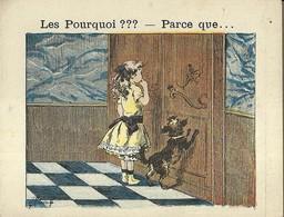 "1405 "" LES POURQUOI ??? ..... PARCE QUE ..... "" FIGURINA DIDATTICA FRANCESE  ORIGINALE - Libri, Riviste, Fumetti"