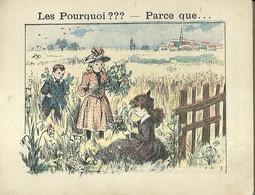"1409 "" LES POURQUOI ??? ..... PARCE QUE ..... "" FIGURINA DIDATTICA FRANCESE  ORIGINALE - Libri, Riviste, Fumetti"