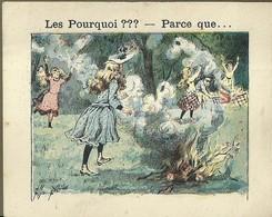"""1410 """" LES POURQUOI ??? ..... PARCE QUE ..... """" FIGURINA DIDATTICA FRANCESE  ORIGINALE - 0-6 Anni"""