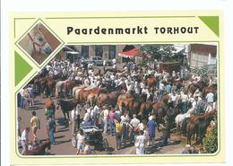 TORHOUT PAARDENMARKT ( CHEVEAUX HORSES ) - Torhout
