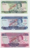 Solomon Islands Specimen Set 2 , 5 , 10 Dollars 1977 - Salomons