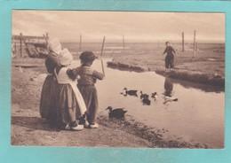 Old Post Card Of Feeding The Ducks,Volendam, North Holland, Netherlands ,S64. - Malta