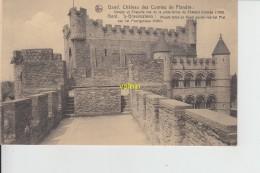 Gand    Chateau Des Comtes De Flandres - Gent