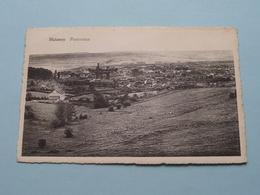 HALANZY - Panorama ( Pap. Seivert ) Anno 19?? ( Zie / See Photo ) ! - Aubange