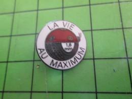 1518A Pin's Pins / Rare Et De Belle Qualité / ANIMAUX : COCCINELLE PNEU 1.6 MM LA VIE AU MAXIMUM - Animaux