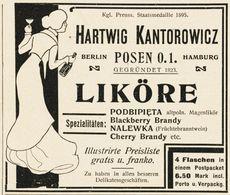 Original-Werbung/ Anzeige 1902 - LIKÖRE / HARTWIG KANTOROWICZ - POSEN - Ca. 90 X 75 Mm - Werbung