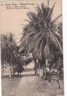 CONGO BELGE ENTIER POSTAL CARTE ILLUSTREE DE COQUILHATVILLE - Stamped Stationery