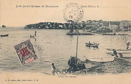 SAINT PIERRE - N° 50 - L'ILE AUX CHIENS - Saint-Pierre-et-Miquelon