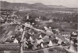 Br - Cpsm Grand Format BENNWIHR (Haut Rhin) - Vue Panoramique Aérienne - La Localité Et Le Vignoble (beau Cachet) - France