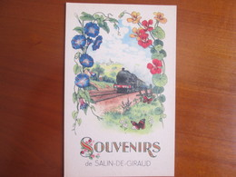 Souvenir De Salin De Giraud . Train - France