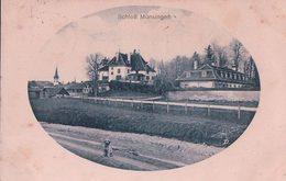Münsingen BE, Schloss Und Hund (10.4.18) Tachée - BE Bern