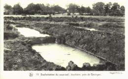 Beeringen  Tourbière. - Beringen