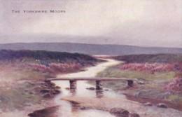 AP92 The Yorkshire Moors - Clapper Bridge, Art Postcard - England