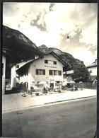 P1460  - ZIANO  - PENSIONE ERICA - Italia