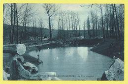 * Schaarbeek - Schaerbeek (Brussel - Bruxelles) * (SBP, Nr 173) Au Parc Josaphat, Park, étang, Vijver, Cygne, Bois, Rare - Schaerbeek - Schaarbeek
