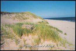 Prince Ewdward Island, Elmira Shores (PC453) - Unclassified