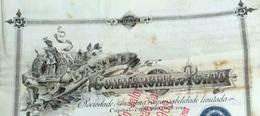 Portugal Acção ( Titulo) BANCO COMMERCIAL DO PORTO 1894 - Azioni & Titoli