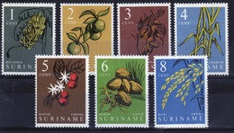 Suriname 1961 Set Of Stamps To Celebrate Local Produce. - Surinam