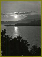 CP Photo Véritable-SEPT-France, 0-3-La Cote D'Azur- Coucher De Soleil - Contre La Lumière