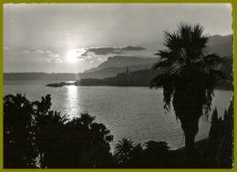 CP Photo Véritable-SEPT-France,0-2-La Cote D'Azur- Coucher De Soleil - Contre La Lumière
