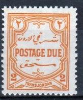 Jordan 1929 Postage Due Stamp In Mounted Mint Condition. - Jordan