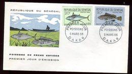 Sénégal - Enveloppe FDC 1966 - Poissons - O 298 - Sénégal (1960-...)