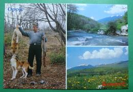Mountain Of OPOJA, Kosovo (Serbia) New Postcards - Kosovo