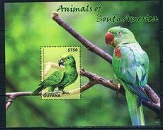 Bloc Sheet Perroquet Perroquets Parrots  Neuf ** MNH  Guyana 2014 - Papagayos