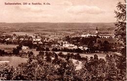 SEITENSTETTEN, 330 M Seehöhe, Verlag  Rauchegger, Seitenstetten, 11.8.1920 - Amstetten