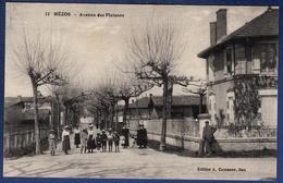 40 MEZOS Avenue Des Platanes - Animée - Autres Communes