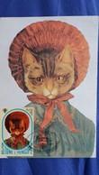 CPM CHAT TIMBRE S TOME 1981 CARTE MAXIMUM - Gatti