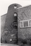 Nijlen MOLEN / MOULIN -Originele Foto Jaren '70 ( A.Carre) 60 - Nijlen