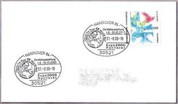 EXPO 2000 HANNOVER. Deutsche Post World Net - 2000 – Hanover (Germany)